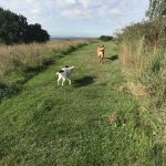 Amelie and Max enjoying a group walk