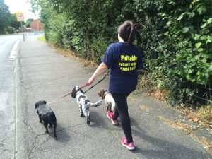 Cheryl from Fluffable walking three dogs.